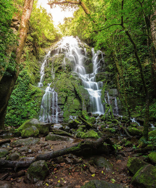 Wall Art - Photograph - Waterfall In Tropical Forest by Alexey Stiop