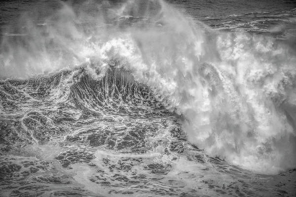 Photograph - Wave Rise by Bill Posner