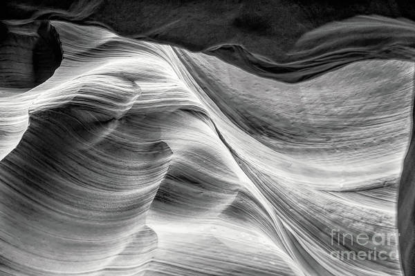 Photograph - Waves by Ed Taylor