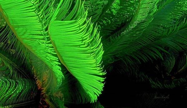 Wall Art - Photograph - Waves Of Green by James Temple