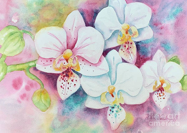 Painting - White Orchids by Hilda Vandergriff