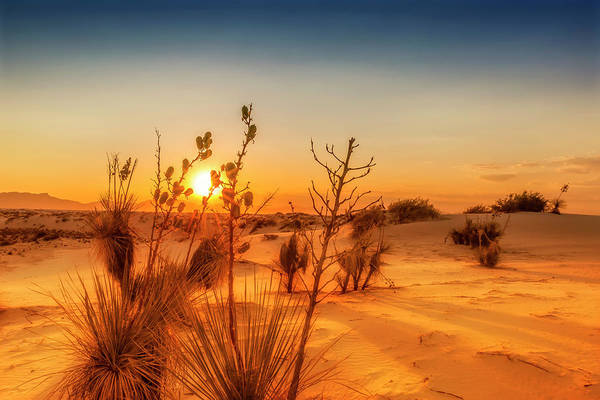 Wall Art - Photograph - White Sands Sunset  by Melanie Viola