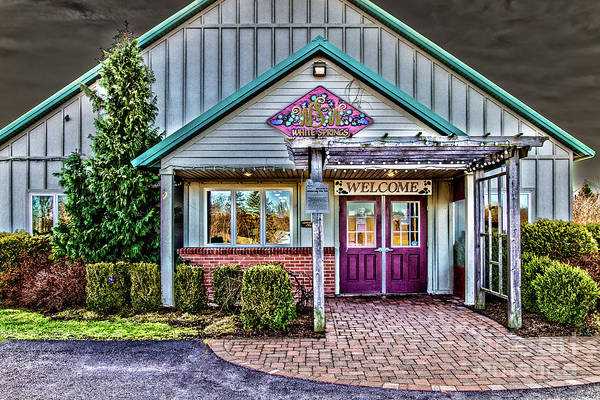 Photograph - White Springs Winery by William Norton
