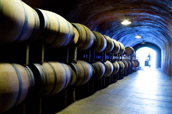 Napa Valley Photograph - Wine Cave With Oak Barrels In Napa by Seanfboggs