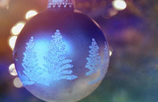 Photograph - Winter Wonderland by Jamart Photography