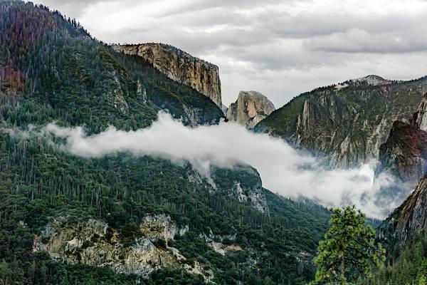 Photograph - Yosemite Valley 4 by Silvia Marcoschamer