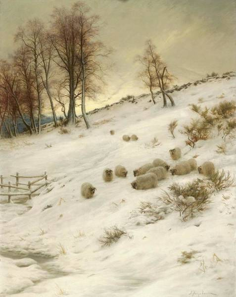 Wall Art - Painting - A Flock Of Sheep In A Snowstorm  by Joseph Farquharson