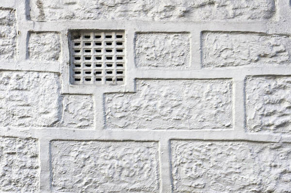 Wall Art - Photograph - White Brick Wall by Tom Gowanlock