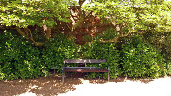 Photograph - 11/05/19 Chorley. Astley Hall. Walled Garden. Sunlit Bench. by Lachlan Main