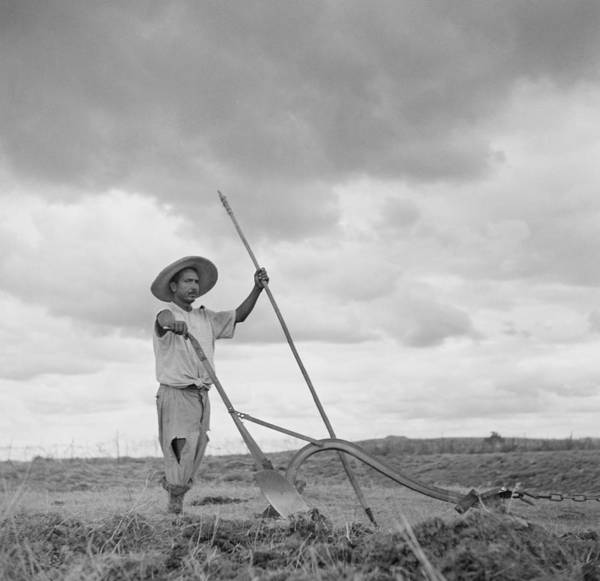 Photograph - Ranching In Michoacan, Mexico by Michael Ochs Archives