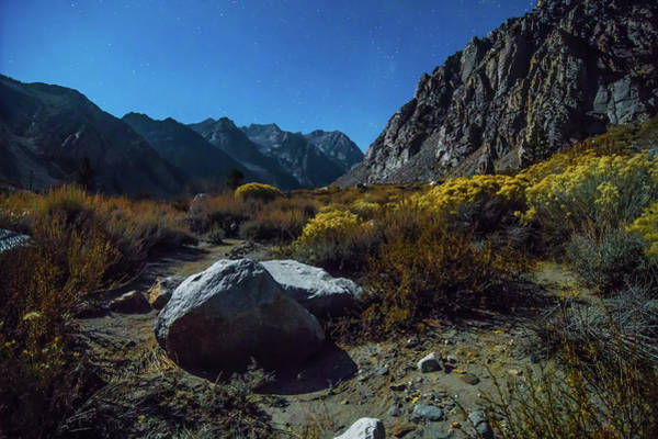 Photograph - Sierra And Inyo National Forest In California by Alex Grichenko