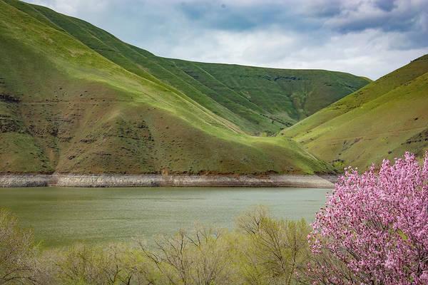 Photograph - 11060 Woodhead Park Idaho by Pamela Williams