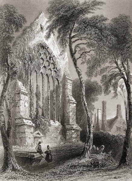 Wall Art - Drawing - Youghal Abbey, County Cork, Ireland. Residence Of Sir Walter Raleigh by Ken Welsh
