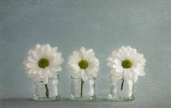 Jar Photograph - 1+1=3 by C.aranega