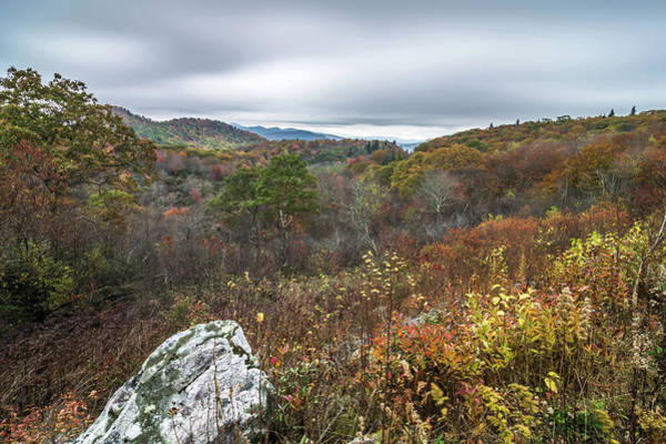 Photograph - Graveyard Fields Overlook In The Smoky Mountains In North Caroli by Alex Grichenko