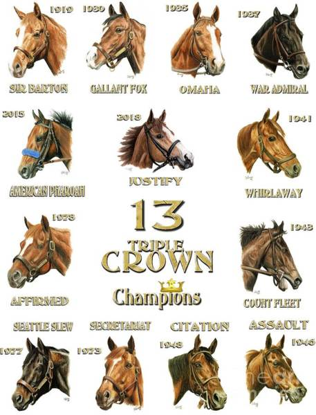 Wall Art - Painting - 13 Triple Crown Champions- White by Pat DeLong