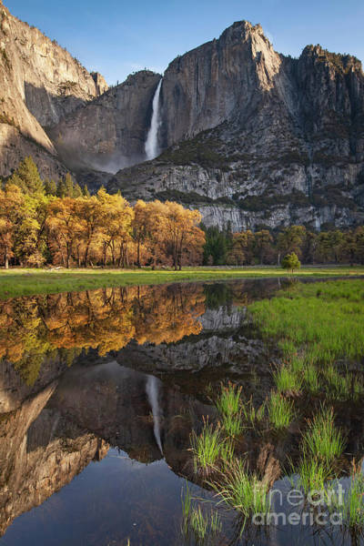 Photograph - 1521 Yosemite Falls Reflections by Steve Sturgill