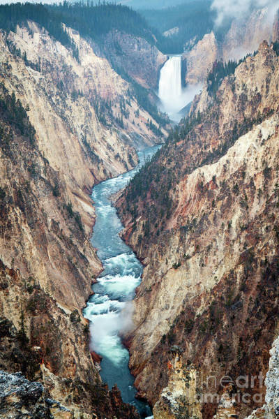 Photograph - 1494 Lower Falls Grand Canyon Of Yellowstone by Steve Sturgill