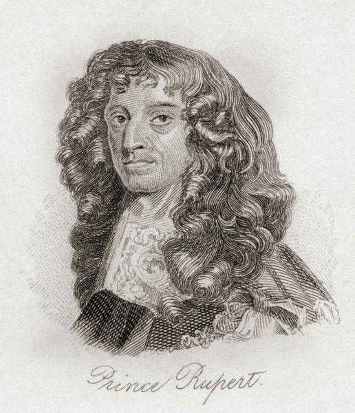 Wall Art - Drawing - Rupert, Count Palatine Of The Rhine, 1619 - 1682. Soldier, Inventor And Amateur Artist  by Ken Welsh