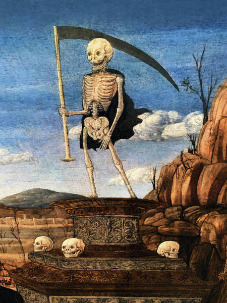 Painting - 15th Century Skeleton Painting by Marilyn Hunt