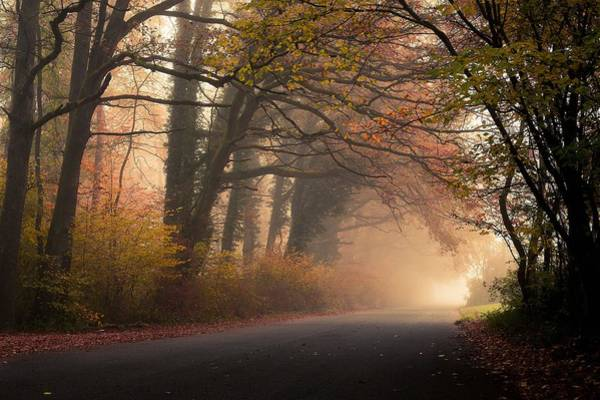 Wall Art - Photograph - Autumn Landscape by Autumn Landscape