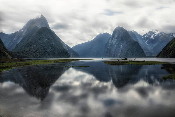 Milford Photograph - Milford Sound - New Zealand by Joana Kruse