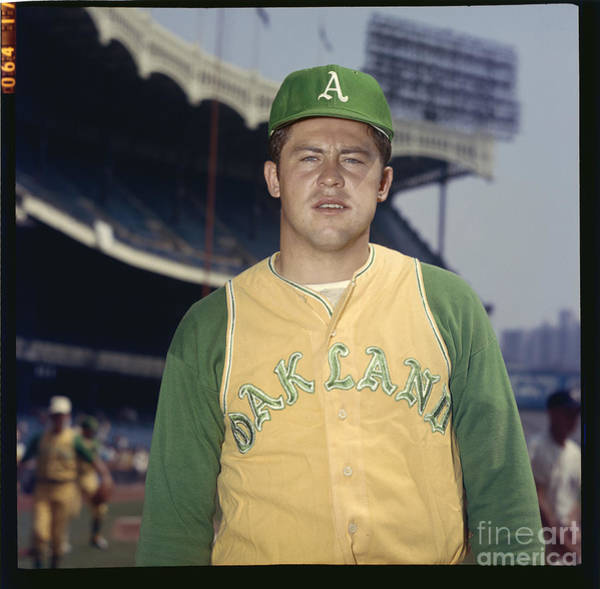 Baseball Pitcher Photograph - Mlb Photos Archive by Louis Requena