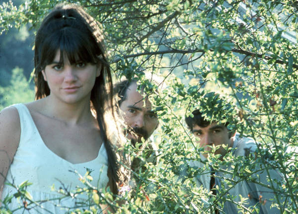 Photograph - Photo Of Linda Ronstadt by Michael Ochs Archives