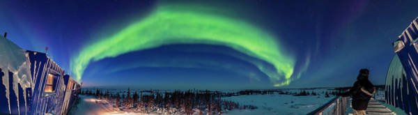 Wall Art - Photograph - 180 Degree Panorama Of An Auroral Oval by Alan Dyer