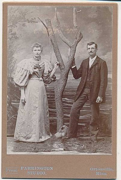 Wall Art - Painting - 1880-89 Fab Dress On Woman, Ortonville Mn Couple Cabinet Farrington Studio Photo by Celestial Images
