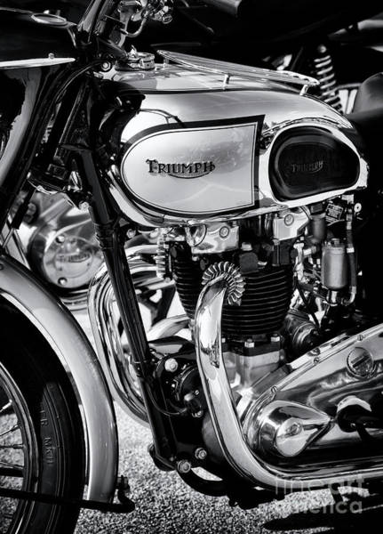 Wall Art - Photograph - 1949 Triumph Tiger Monochrome by Tim Gainey