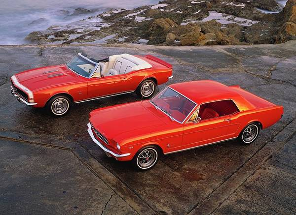 Sport Car Photograph - 1964 12 Ford Mustang Hardtop Coupe 1967 by Car Culture