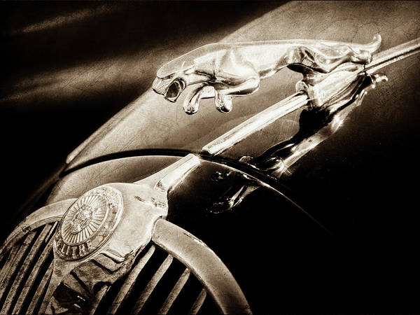 Wall Art - Photograph - 1964 Jaguar Mk2 Saloon Hood Ornament And Emblem-1421bscl by Jill Reger