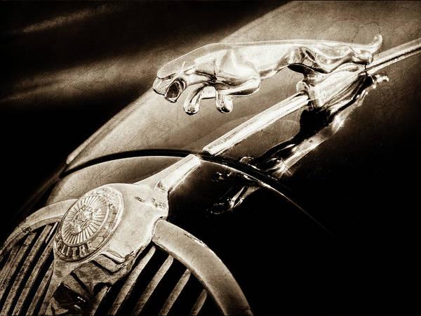 Photograph - 1964 Jaguar Mk2 Saloon Hood Ornament And Emblem-1421bscl by Jill Reger