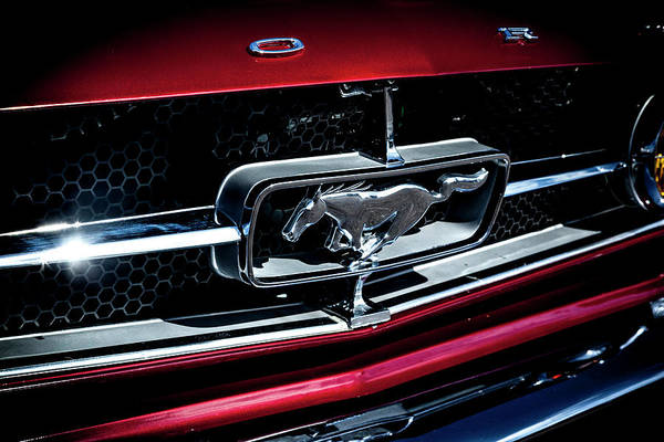 Photograph - 1964.5 Ford Mustang, No.2 by Eric Christopher Jackson