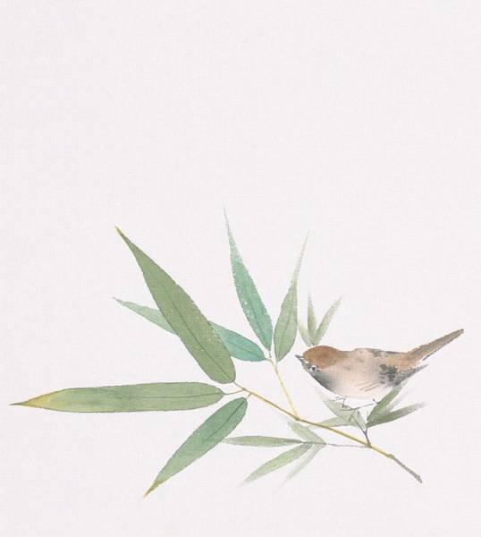 Bamboo Digital Art - A Sparrow And Bamboo Leaves by Daj