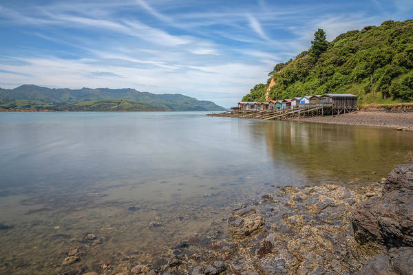 South Bank Photograph - Akaroa - New Zealand by Joana Kruse