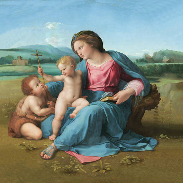 Painting - Alba Madonna  by Raphael