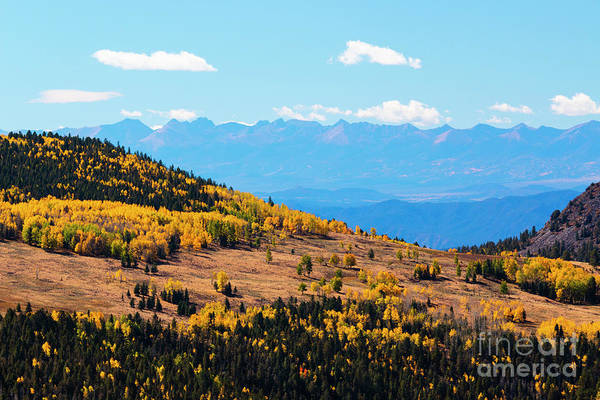 Photograph - Autumn In The Pike National Forest Of Colorado by Steve Krull