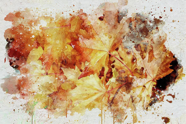 Photograph - Autumn Leaves Abstract by Marilyn Wilson