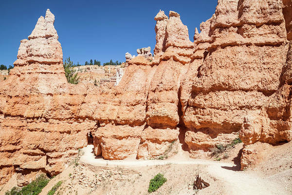 Wall Art - Photograph - Bryce Canyon Fascinating Rock Formations  by Melanie Viola
