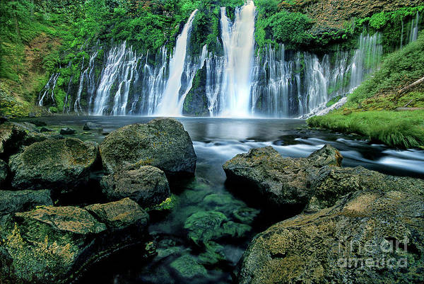 Photograph - Burney Falls Mcarthur Burney State Park California by Dave Welling
