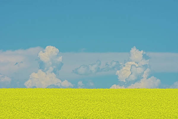 Wall Art - Photograph - Canada, Alberta, Strathmore by Jaynes Gallery