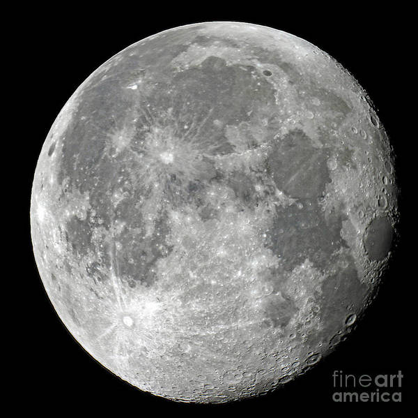 Wall Art - Photograph - Carolina Moon by Edd Lange