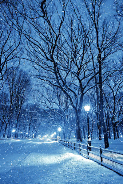 Mall Photograph - Central Park By Night During Snow Storm by Pawel.gaul