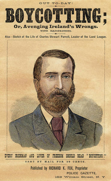 Wall Art - Painting - Charles Stewart Parnell (1846-1891) by Granger