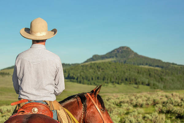 Wall Art - Photograph - Cowboy Back by Todd Klassy