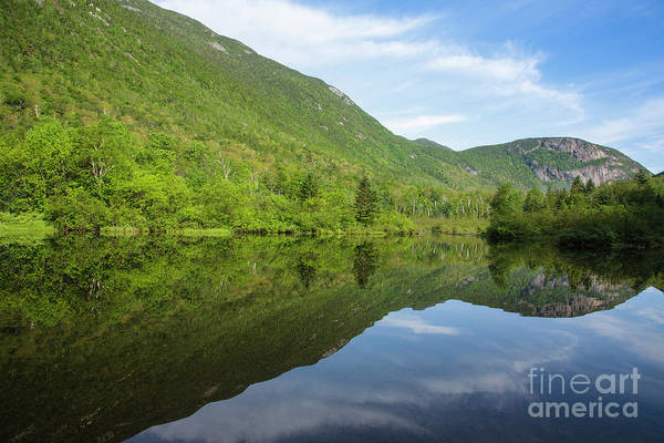 Photograph - Crawford Notch State Park - White Mountains Nh Usa by Erin Paul Donovan