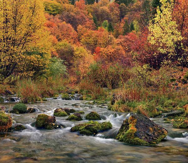Wall Art - Photograph - Cub River Autumn by Leland D Howard