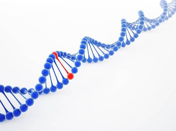 Color Image Digital Art - Dna Molecule, Artwork by Science Photo Library - Andrzej Wojcicki